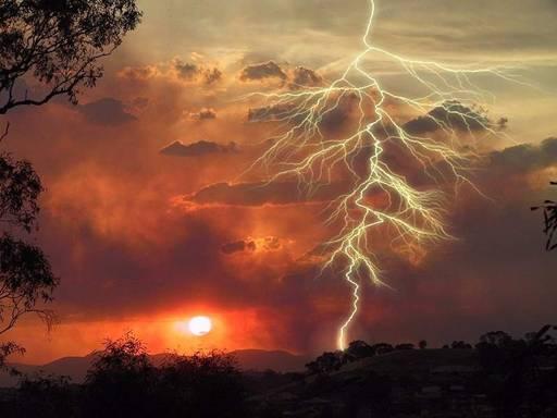 thunder_boldt.jpg