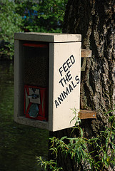 feed-the-animals
