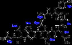 http://en.wikipedia.org/wiki/Oxytocin